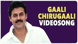 Gaali Chirugaali Video Song || Vasantam Movie || Venkatesh Kalyani || shalimarcinema