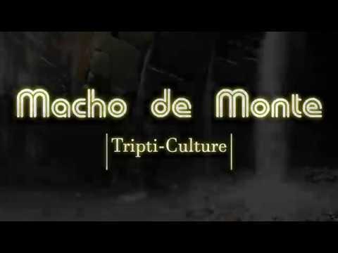 Cañón del Río Macho de Monte | Cuesta de Piedras, Chiriquí, Panamá