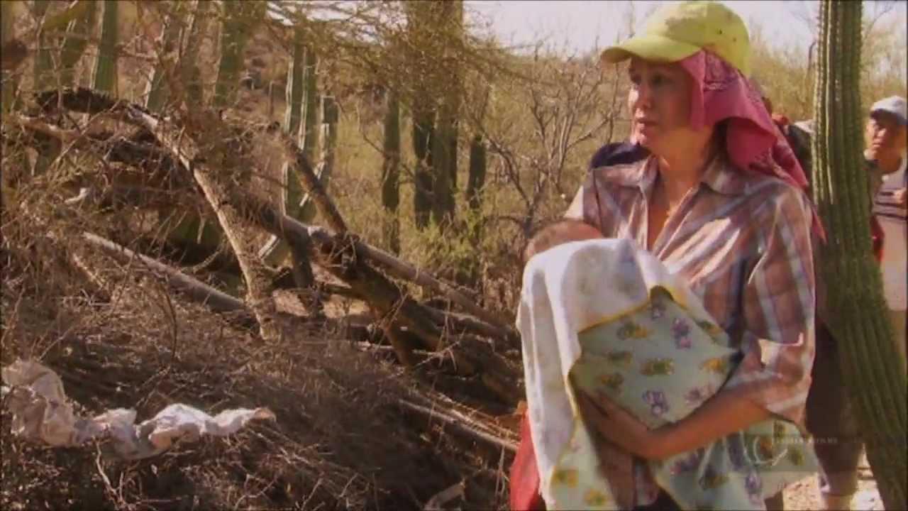 Ver Película – 7 Soles Parte-3/4 HD en Español