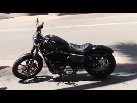 Palm beach with friends new Harley Davidson