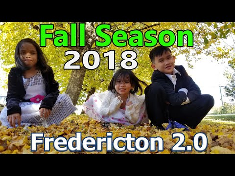 2018 Fall Season In Fredericton, New Brunswick, Canada