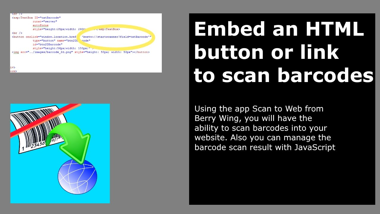 Developer help for Scan to Web | barcode scanning web browser