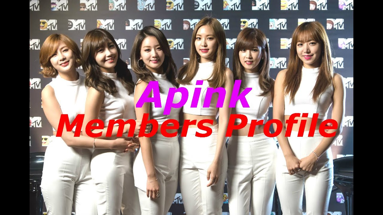 Apink Members