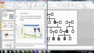 Cellen och genetik del 2