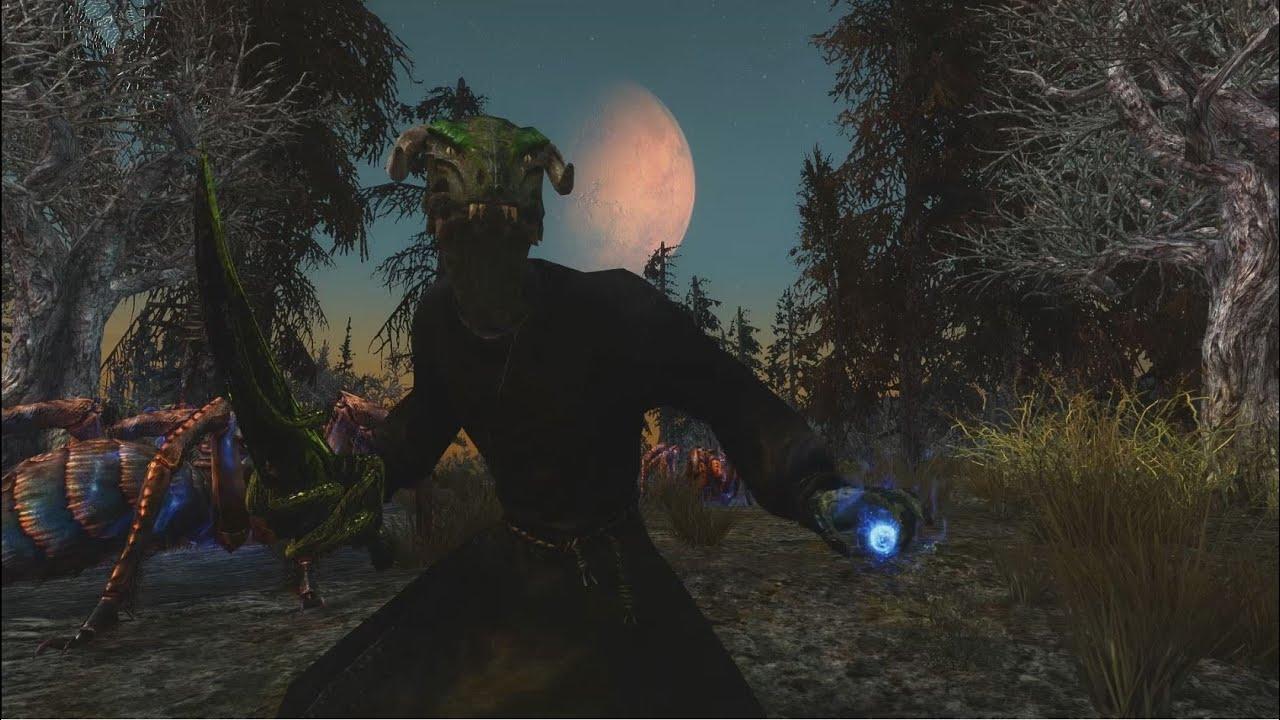 Skyrim Builds - The Whet-Fang (Gekromancer)