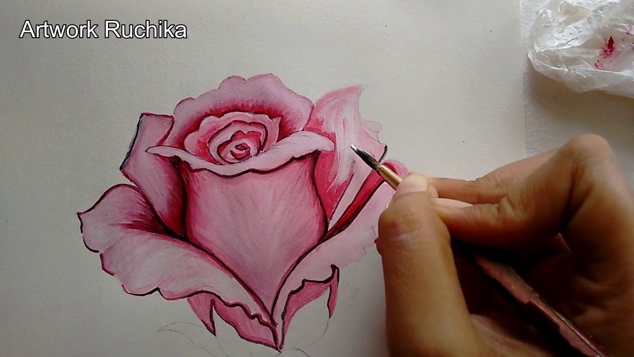 Pink rose painting step by step rose flower painting for How to paint a rose in watercolor step by step
