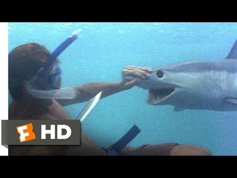 The Beach 3/5 Movie   A Shark Tale 2000 HD