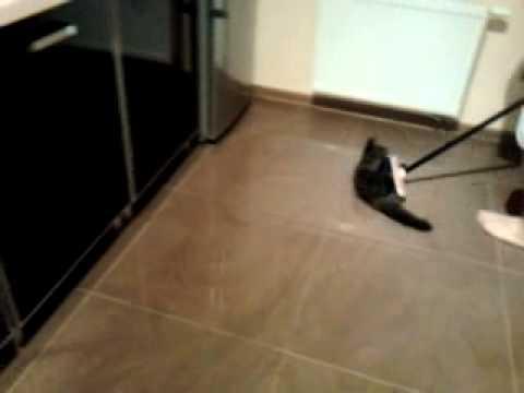 Swiffer The Cat Mop Broom Funny Dust Picker Upper Youtube