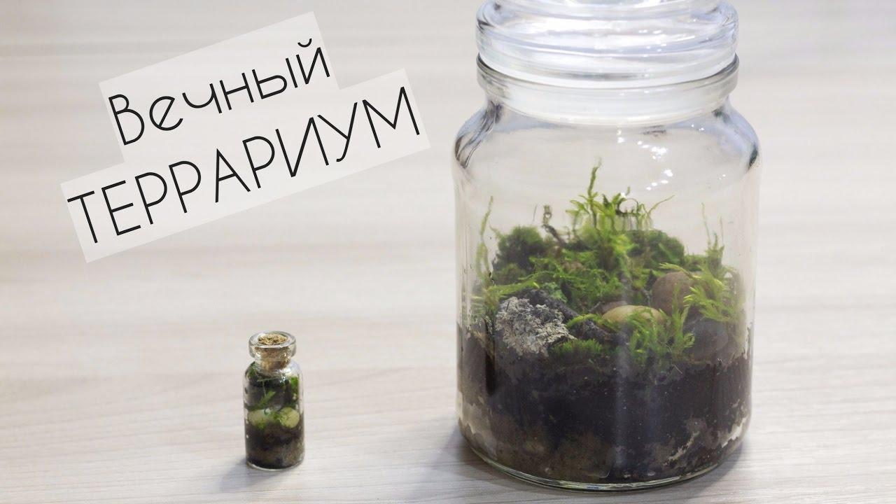 Компания «кубаньстеклотара» предлагает пластиковую и стеклянную тару, изделия из пэт, крышки и закаточные машинки оптом с доставкой по россии в интернет-магазине.