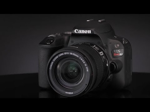 Introducing the Canon Rebel SL2 Digital Camera