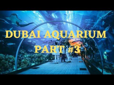 Part-3   Dubai Aquarium & Underwater Zoo / Dubai Mall   Crafts And Vlogs By Fanha Fiyas