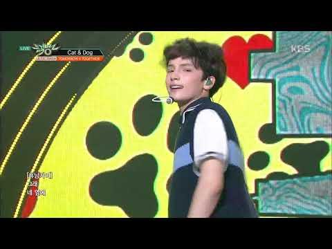 Cat & Dog - TXT(투모로우바이투게더)  [뮤직뱅크 Music Bank] 20190426