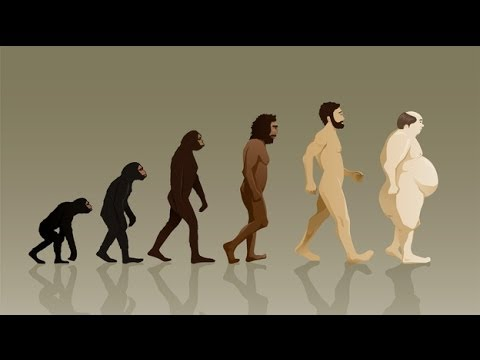 fat evolution of man - YouTube