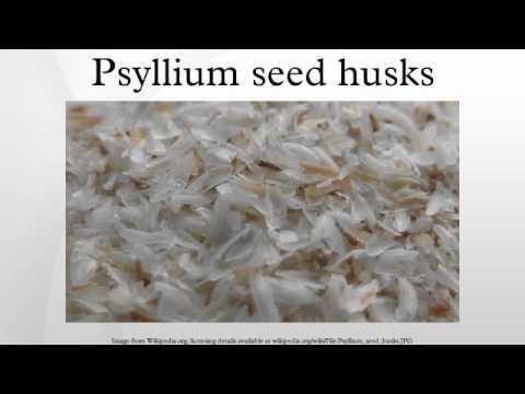 Psyllium Seed Husks Youtube