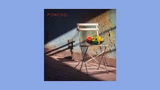 Baixar PONCHO - Lady Friend