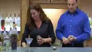Van Gogh Vodka Gogh Cast - New Acai Blueberry Cocktails