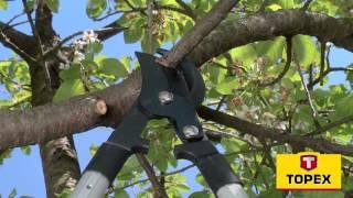 SprytnyBlog.pl (odc. 1) Porządki na działce - przycinanie krzewów i gałęzi