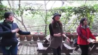 味衛佳柿餅健康操(柿餅婆版)  影片提供:Jia-Heng Liao
