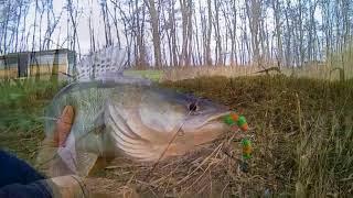 Нарезка за год, - Кубанская  рыбалка. ............. ( 18+ ).....