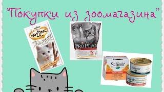 Покупки из зоомагазина для моей кошки!
