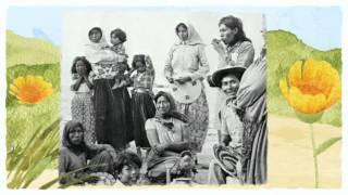 Grupos Étnicos Sonora