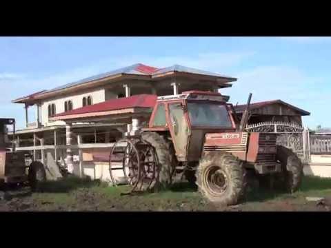 Black Bush Market- YAKUSARI- GUYANA  (MYSTIC).