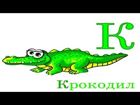 Азбука Букварио для Детей - Алфавит с Животными. Учим Звуки Букв. Носики Курносики