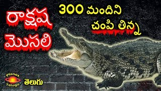 Most Deadly Crocodile in the World ( Gustave ) in Telugu by Planet Telugu