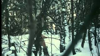 Volání rodu. (1977)