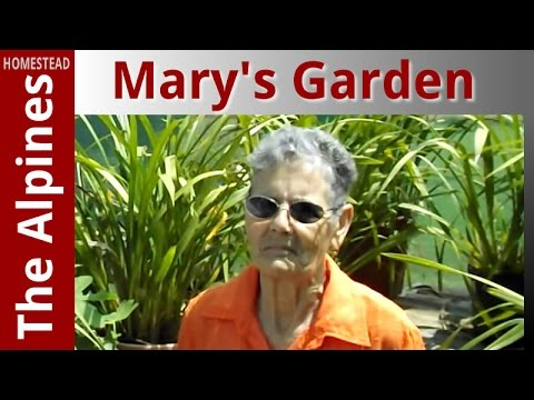 Mary Mary How does Your Garden Grow? - My Friend, Mary
