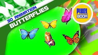 Green Screen Group of Butterflies Flying Together - Footage PixelBoom