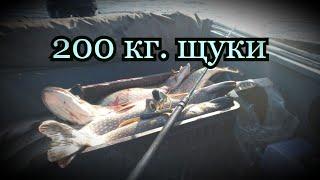 4 месяца в Тайге Серия 30 Заключительная Супер рыбалка 200 кг Щуки
