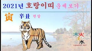 2021년 호랑이띠 - 2021년 신축년 호랑이띠 띠별 월별 사주 운세