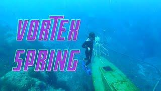 VORTEX SPRINGS | Best Springs In Florida