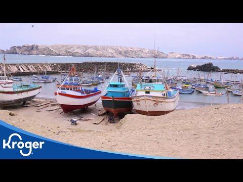 Seafood Sustainability   Sustainability   Kroger