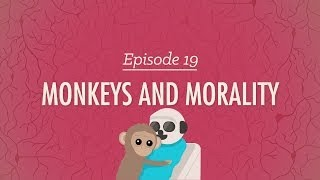 Monkeys and Morality: Crash Course Psychology #19