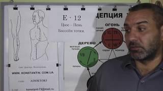 Дисциплина в  Питание вместе с точками Акупунктуры.