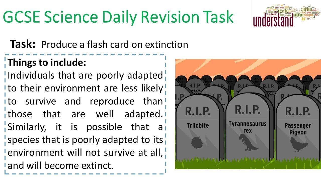 GCSE Science Daily Revision Task 204 - YouTube