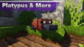 More Australian Animals! | Alex's Mobs Zoo (Minecraft 1.16.5 Zoo)