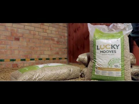 Bild: Wie verwendet DU am Besten Lucky Hooves Pferdeeinstreu?