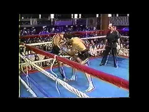 Kru James Wellington Fights - Unedited