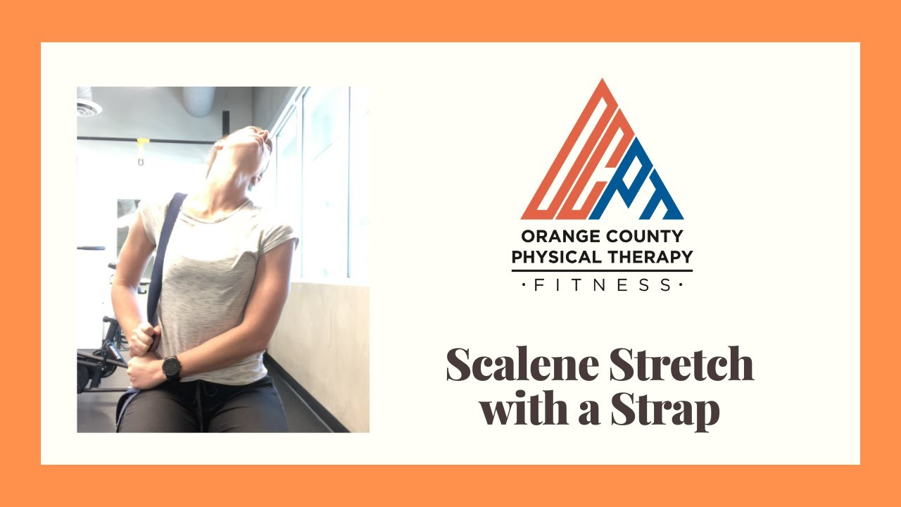 Download Scalene Stretch with a Strap