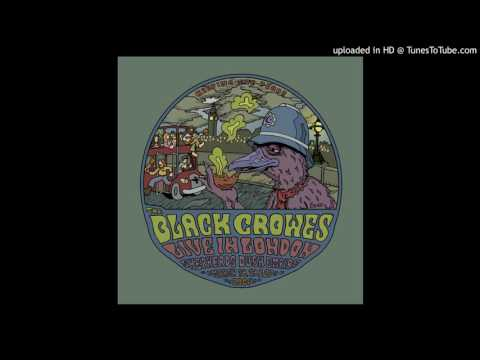 The Black Crowes - Dreams (live, London, March 20th, 2006)