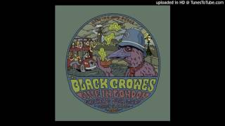 The Black Crowes Dreams live, London, March 20th, 2006.mp3