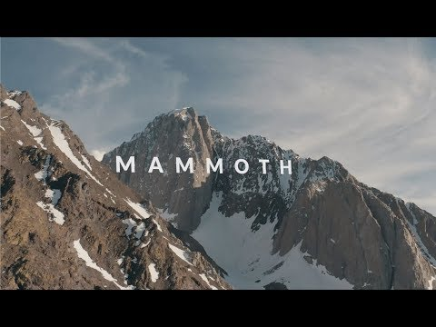 Shred Bots: Mammoth mit Torstein & Craig