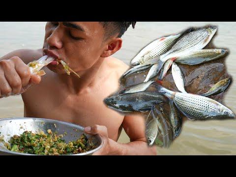 Eating Raw Freshwater Fish - Eat Freshwater Fish Alive