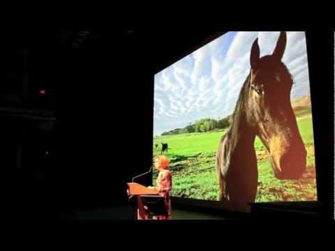 Annie Griffiths - A Camera, Two Kids and a Camel - National Geographic Live