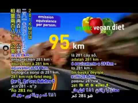 Organic Vegan Diet Will Save The Planet