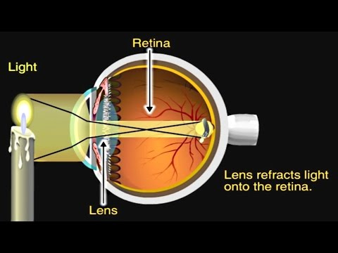 How the Eye Works Animation - How Do We See  - Nearsighted & Farsighted Human Eye Anatomy