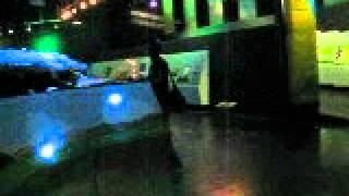 Cocodrile, Museo Ciudad Victoria 2012